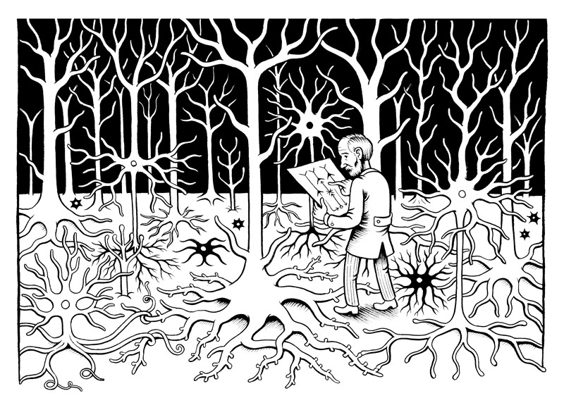 man in a neuron forest